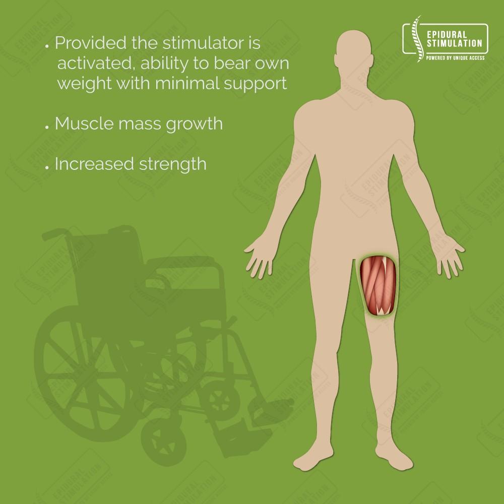 Improvement muscle mass and strength - Epidural Stimulation